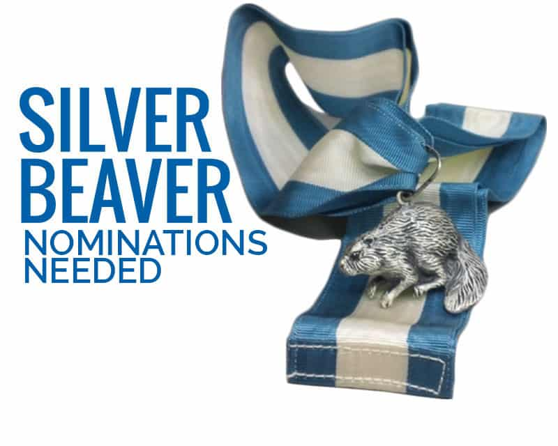 2020_gmf_Silver-Nominations-Due2_800x640